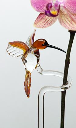 Orchideenstab mit Kolibri, fliegend