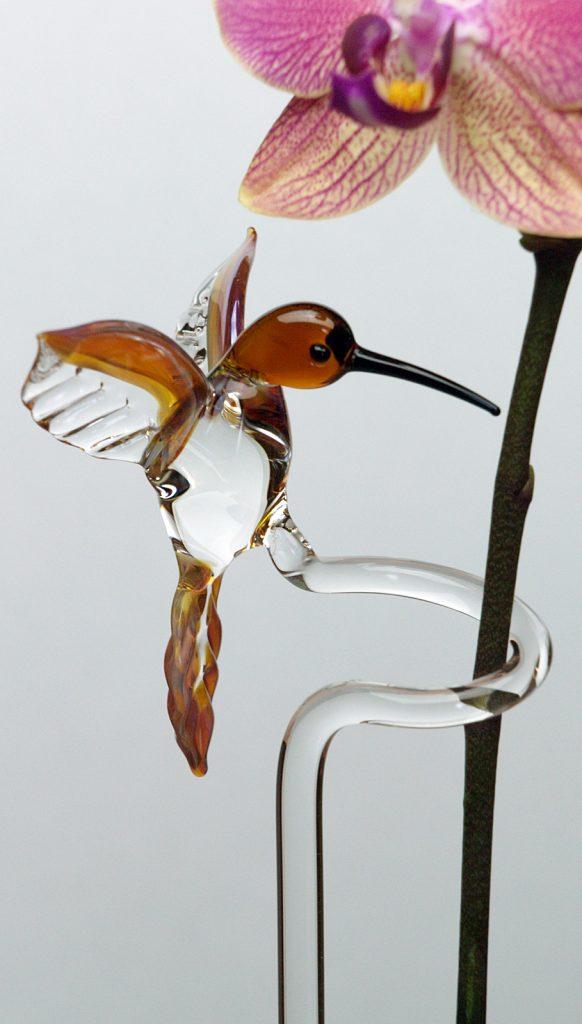 Kolibri Orchideenstab