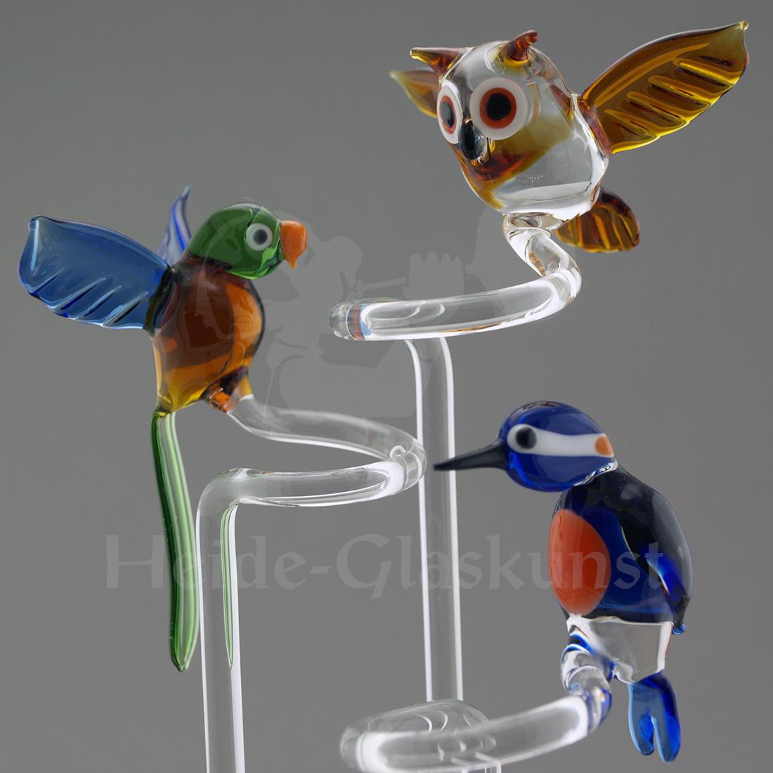 Glas-Orchideenstab mit Papagei fliegend, Eule fliegend oder Eisvogel